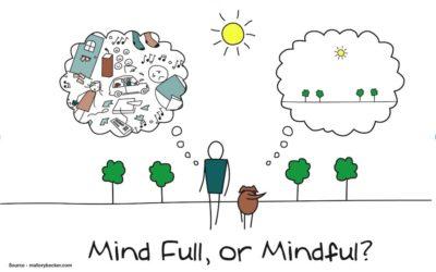 Pratiques de méditations guidées ouvertes à tous